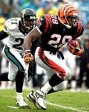 Corey Dillon, Cincinnati Bengals Photos stock