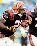 Corey Dillon, Cincinnati Bengals Photo libre de droits