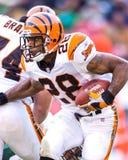 Corey Dillon, Cincinnati Bengals Royalty Free Stock Photo