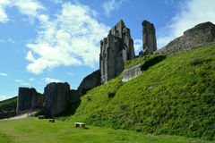 Corfe Ancient Castle Ruins in Dorset Stock Image