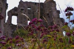 Corfe Schloss Stockfoto
