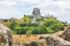 Corfekasteel, Dorset, Engeland, het Verenigd Koninkrijk Stock Afbeeldingen
