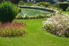 Corfu. Beautiful green park with a small pond royalty free stock photo