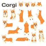 Corgi, cane nell'azione, cane felice royalty illustrazione gratis