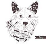 Corgi. Coloring book Royalty Free Stock Image
