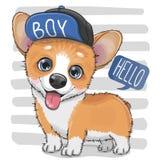 Corgi do cão dos desenhos animados em um tampão ilustração stock