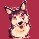 Corgi Dog Painting Poster Stock Photo