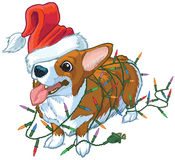 Corgi Dog with Santa Hat and Christmas Lights Vector Illustration. Vector cartoon clip art illustration of a cute and happy welsh corgi dog or puppy wearing a royalty free illustration