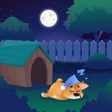 Corgi dormant sur le pré près de sa maison sur l'arrière-cour Paysage de nuit avec le ciel étoilé, pleine lune, arbres verts, bro illustration stock