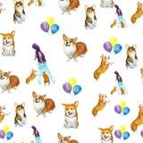 Corgi psa wzór Obraz Stock