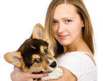 Corgi puppy and young girl. Royalty Free Stock Photos