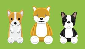 Corgi Shiba Inu Boston Terrier Pet Doll Set Cartoon Vector Illustration Royalty Free Stock Photo