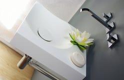 Corian vask Royaltyfria Bilder