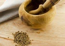 Coriander. Crack coriander seeds in a wooden pestle Stock Image