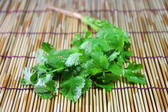 Coriander on bamboo plate. Ingredient in many menu of Thai's food style royalty free stock image
