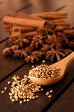 Coriander on a beech wood spoon Stock Photography