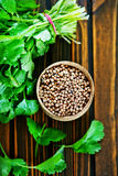 Coriander Royalty Free Stock Photo