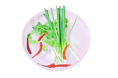 Coriander, Chili and Spring Onions Stock Images