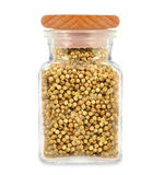 Coriander in a jar Stock Images