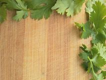 Coriander leaves border on wooden background Royalty Free Stock Image