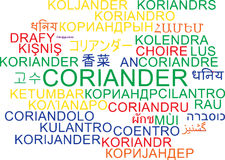 Coriander multilanguage wordcloud background concept Stock Image
