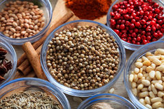 Coriander and other spices. On a wooden surface stock photos