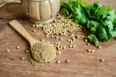 Coriander powder, Aromatic ingredients on rustic wooden table. Coriander powder, Aromatic ingredients and condiment on rustic wooden table Royalty Free Stock Images