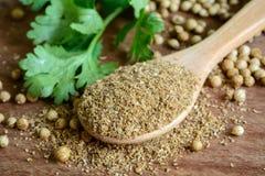 Coriander powder, Aromatic ingredients on rustic wooden table. Coriander powder, Aromatic ingredients and condiment on rustic wooden table Stock Images