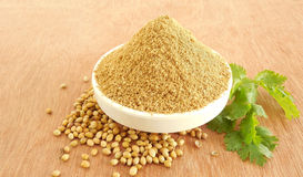 Coriander Powder. Coriander or dhaniya powder is used as an ingredient in some food and is also said to be an alternative or herbal medicine Royalty Free Stock Photo