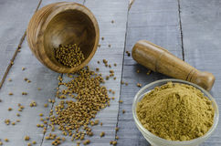 Coriander powder Stock Photography