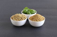 Coriander Powder with Coriander Seeds and Leaves. Which are healthy food, in bowls stock photography