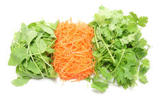 Coriander,Rucola and Shredded carrots Royalty Free Stock Photos