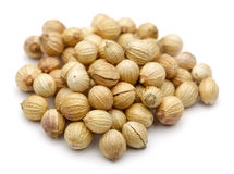 Coriander seed. A collection of coriander seed Royalty Free Stock Photos