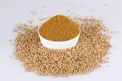 Coriander seed Royalty Free Stock Image