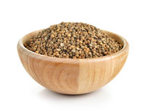 Coriander seed in the wood bowl on white background Stock Photography