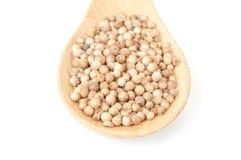 Coriander seed on wooden spoon Stock Photos