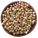 Coriander Seeds Royalty Free Stock Photos