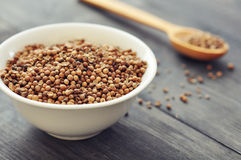 Coriander seeds Royalty Free Stock Images