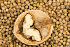 Coriander seeds background with half of walnut on black Royalty Free Stock Photo