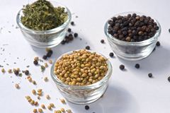 Coriander Seeds Black Pepper Fenugreek Leaves Dry. In Bowl isolated Coriander Seeds royalty free stock photos