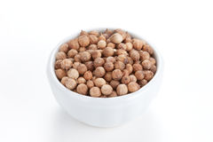 Coriander Seeds in a bowl on white background. Royalty Free Stock Images