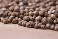 Coriander seeds closeup royalty free stock image
