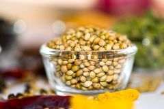 Coriander Seeds. Seeds in Bowl royalty free stock photos