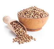 Coriander seeds isolated on white Royalty Free Stock Image