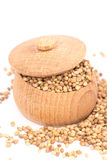 Coriander Seeds Stock Image