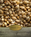 Coriander seeds labeled Royalty Free Stock Image