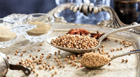 Coriander seeds and powder Stock Image