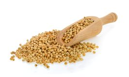Coriander seeds in scoop on white background Stock Photo