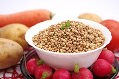 Coriander seeds. Some dried coriander seeds in a bowl Stock Photography