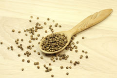 Coriander seeds in a spoon Stock Photos